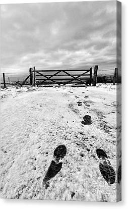 Footprints In The Snow Canvas Print by John Farnan