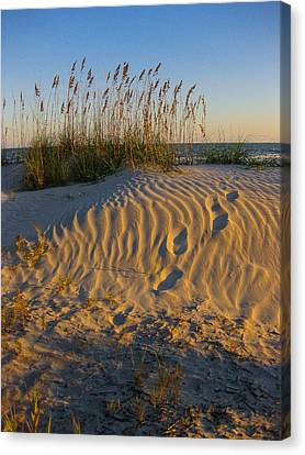 Footprints Canvas Print by Patricia Schaefer