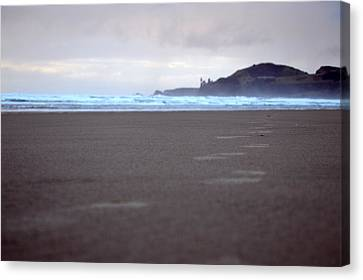 Footprints Canvas Print by Sheldon Blackwell