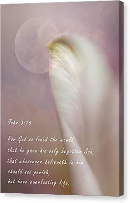 For God So Loved The World Canvas Print by David and Carol Kelly
