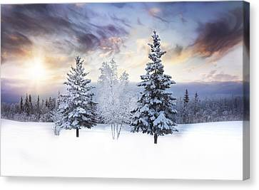 Winter Trees Canvas Print - For The Love Of Winter by Amber Fite