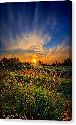 For When The Day Began Canvas Print by Phil Koch