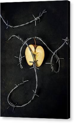 Creepy Canvas Print - Forbidden Fruit by Joana Kruse