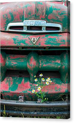 Ford Canvas Print by Aaron Spong