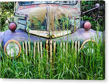 Ford Field Of Dreams Canvas Print by Teri Virbickis