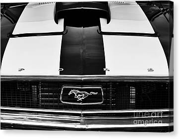 Ford Mustang Hood Monochrome Canvas Print by Tim Gainey