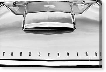 Ford Thunderbird Monochrome Canvas Print by Tim Gainey