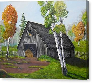 Forest Barn Canvas Print