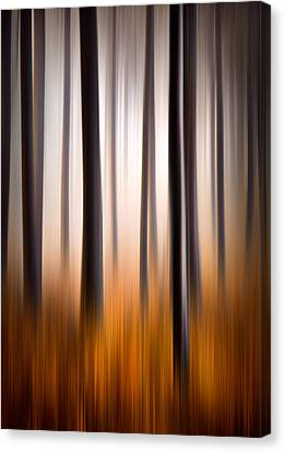 Forest Essence Abstract Autumn Landscape Canvas Print by Dave Allen