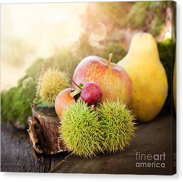 Forest Fruit Canvas Print
