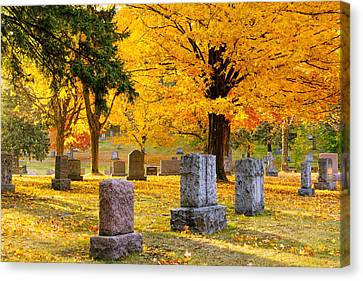 Autumn At Forest Hill Canvas Print by Mary Amerman
