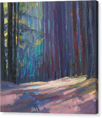 Forest Light Canvas Print by Ed Chesnovitch