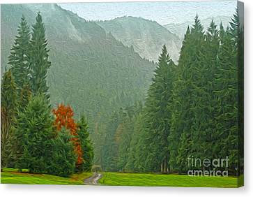 Forest Canvas Print by Nur Roy