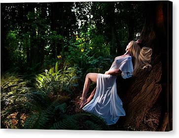 Forest Nymph 3 Canvas Print by Dario Infini
