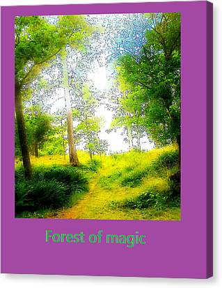 Walk Into The Forest Of Magic Canvas Print by Hilde Widerberg