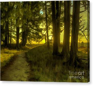 Forest Path Canvas Print by Jean OKeeffe Macro Abundance Art