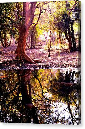 Forest Reflection Canvas Print by Deepti Chahar
