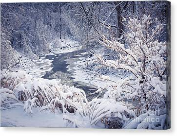 Forest River In Winter Snow Canvas Print by Elena Elisseeva