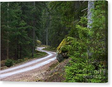 Canvas Print featuring the photograph Forest Road by Kennerth and Birgitta Kullman