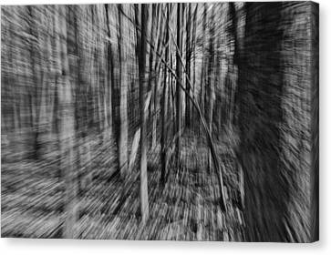Forest Time B.w Canvas Print
