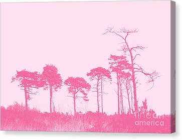 Forest Trees In Pink Canvas Print by Natalie Kinnear