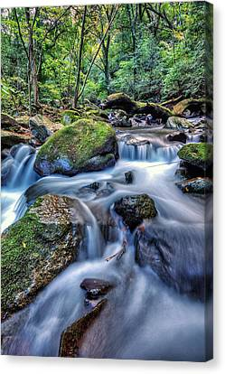 Canvas Print featuring the photograph Forest Waterfall by John Swartz