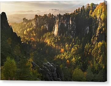 Forest Whispers Canvas Print by Karsten Wrobel
