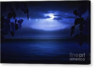 Forever Blue Canvas Print by Tom York Images