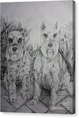 Canvas Print featuring the drawing Forever Friends by Laurianna Taylor