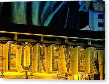Forever Canvas Print by Karol Livote