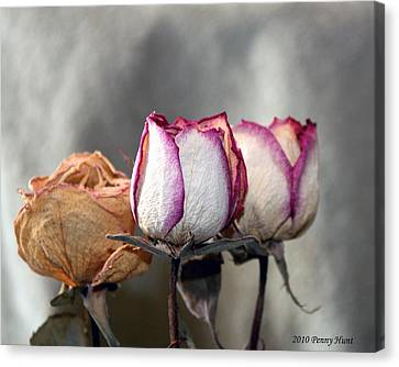 Canvas Print featuring the photograph Forever Roses by Penny Hunt