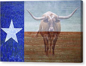 Forever Texas Canvas Print by Paul Huchton