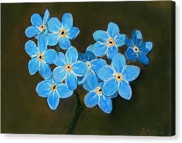 Plants Canvas Print - Forget-me-not by Anastasiya Malakhova