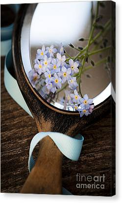 Forget Me Not Canvas Print by Jan Bickerton