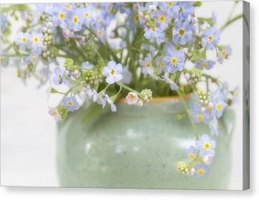 Forget-me-nots In A Vase Canvas Print by Peggy Collins