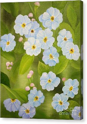 Forget Me Nots Canvas Print by Jimmie Bartlett