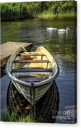 Swans... Canvas Print - Forgotten Boat by Adrian Evans