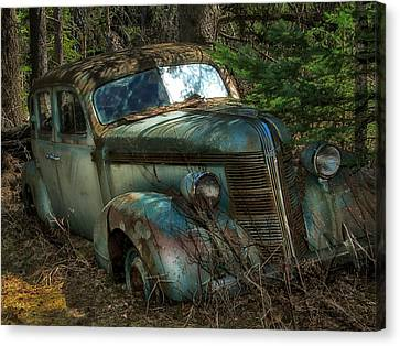 Forgotten In The Forest Canvas Print