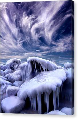Winter Light Canvas Print - Forgotten Tales by Phil Koch