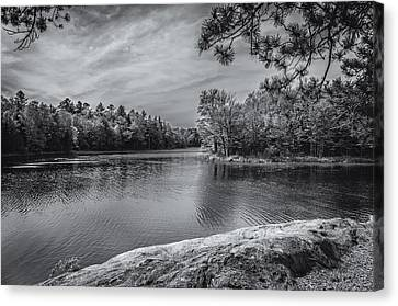 Canvas Print featuring the photograph Fork In River Bw by Mark Myhaver