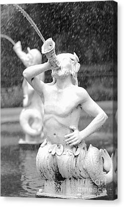 Forsyth Park Fountain - Black And White 1 2x3 Canvas Print by Carol Groenen
