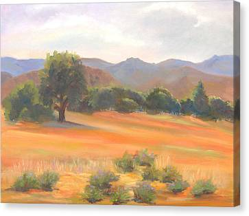 Fort Collins Foothills Canvas Print by Marcy Silverstein