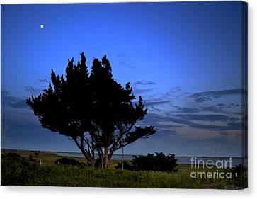 Fort Fisher Moonrise  Canvas Print