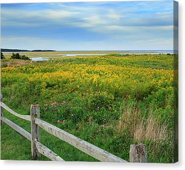 Fort Hill Area Cape Cod  Canvas Print