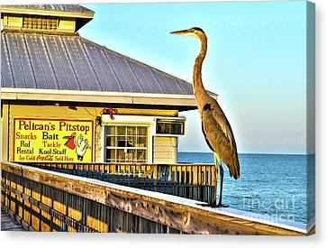 Fort Myers Beach Bird On Pier Canvas Print