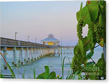 Fort Myers Beach Pier Canvas Print by Timothy Lowry