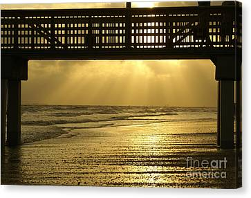 Fort Myers Golden Sunset Canvas Print by Jennifer White