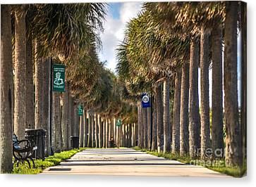 Fort Pierce Canvas Print - Fort Pierce Florida by Liesl Marelli