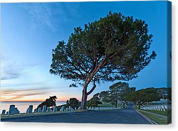 Fort Rosecrans National Cemetery Canvas Print by Alexis Birkill