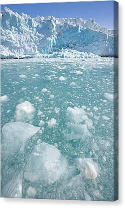 Fortuna Glacier Descending To Antarctic Canvas Print